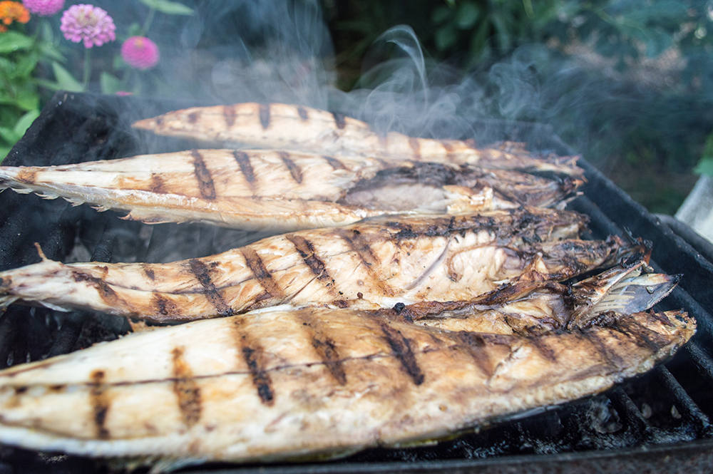 Fish on gradele (barbecued fish)